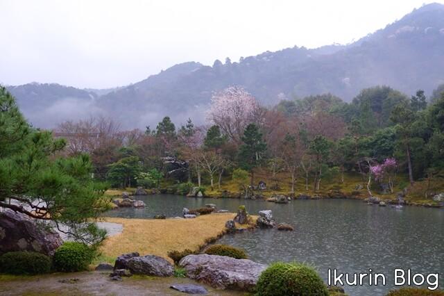 京都・嵐山の天龍寺の庭園写真 イクリンブログ