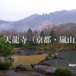 京都・嵐山の天龍寺の写真 イクリンブログ