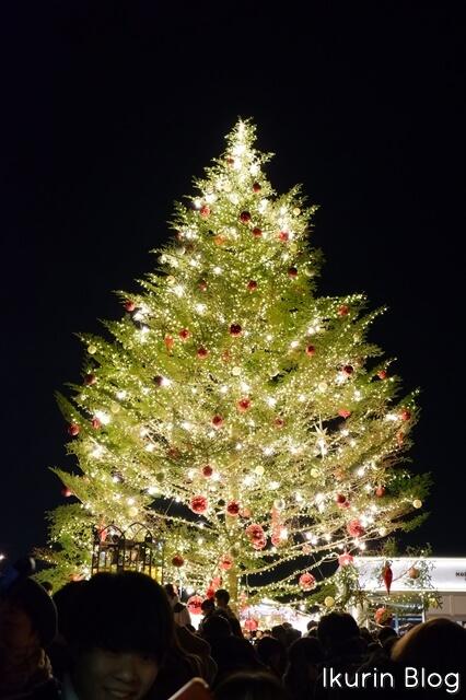 横浜みなとみらい「クリスマスツリー」イクリンブログ