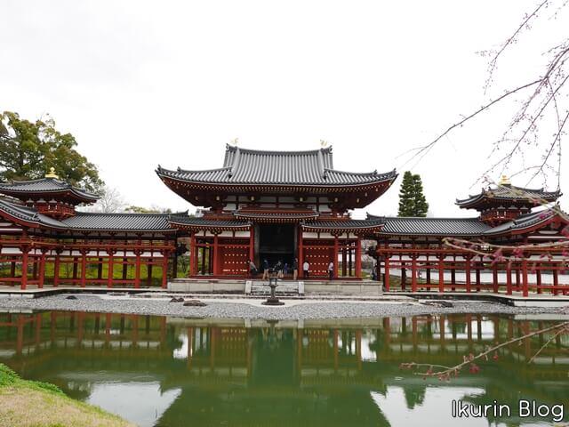 京都・宇治「平等院の正面」イクリンブログ