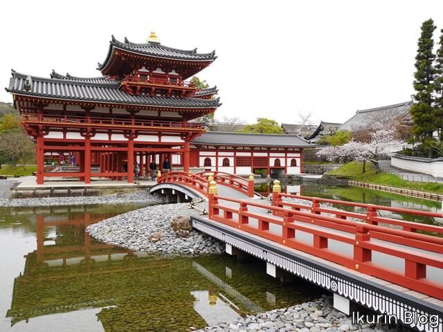 京都・宇治「平等院の内部拝観」イクリンブログ