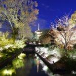 京都・東寺「夜景」イクリンブログ