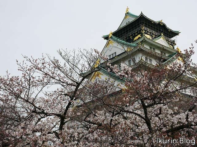 大阪城公園「大阪城とサクラ」イクリンブログ