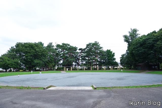 埼玉・新所沢「公園」ikurinblog